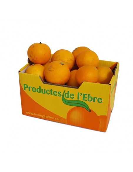 Naranjas 10Kg ECO