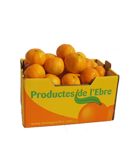 Mandarinas 10Kg ecológicas