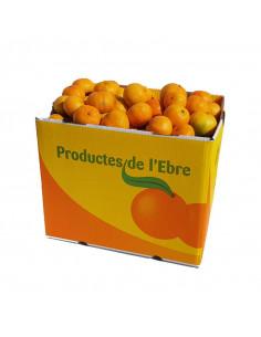 Mandarines 40Kg ecològiques