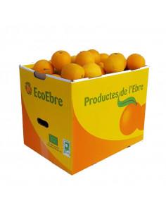 Naranjas 20Kg ECO